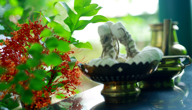 ayurvedic treatment for knee pain in kerala